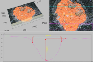 "<div class=""bildtext""><span class=""textmarkierung"">»14</span> 3D image (top left) and 3D depth profile (below) of a fault on the surface of a roof tile</div>"