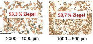 "<div class=""bildtext""><span class=""bildnummer"">»16</span> Microscope images of various fractions of Brick Specimen F </div>"