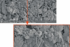 """<div class=""""bildtext_en""""><span class=""""bildnummer"""">»Fig. 4:</span> Neo-formed calcite crystal on the brick's surface by SEM</div>"""
