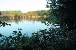 "<span class=""bildunterschrift_hervorgehoben"">»9</span> The spent pit became a lake biotope<br />"