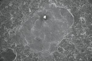 "<span class=""bildunterschrift_hervorgehoben"">»18</span> Scanning electron image of a baryte at 30-fold magnification"