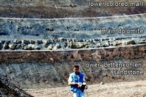 "<div class=""bildtext"">&gt;&gt;3 K1 Sequence: Lower Lettenkohlen Keuper in the clay pit of the former brickworks ELM-Poroton in Schöningen/Subhercynian Basin</div>"