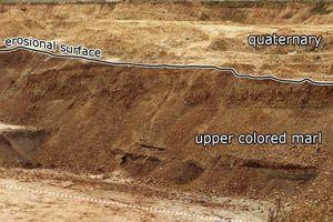 "<div class=""bildtext"">&gt;&gt;4 K1 Sequence: Upper Lettenkohlen Keuper in the clay pit of the former brickworks ELM-Poroton in Schöningen/Subhercynian Basin</div>"